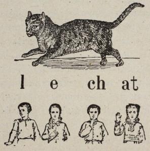 phonomimie le chat